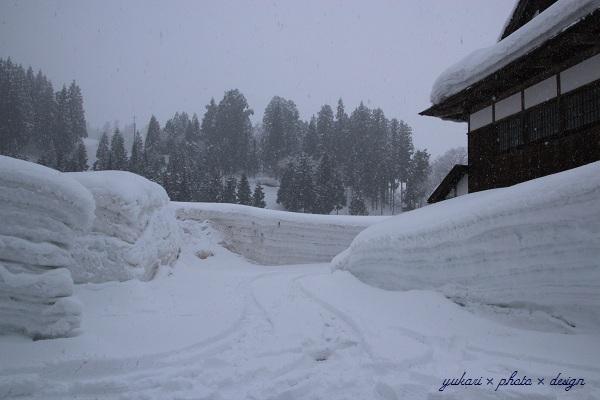 雪の運動会6