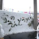 【旅行記】新潟県妻有弾丸ツアー~雪の運動会~