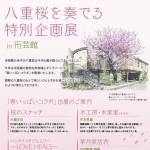 【イベント】八重桜を奏でる特別企画展 in 衎芸館(荻窪)